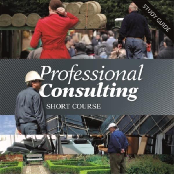 Professional Consulting Short Course