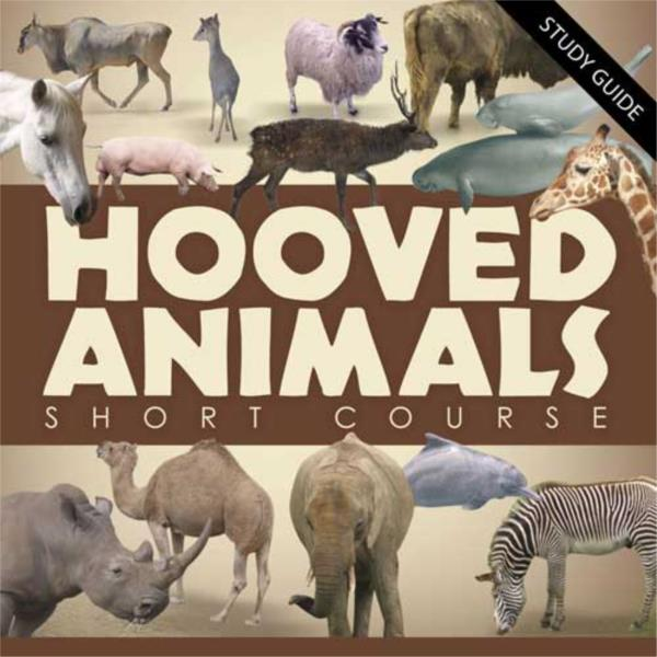 Short Course Hooved Animals
